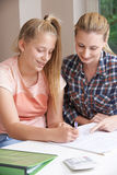Female Home Tutor Helping Girl With Studies Royalty Free Stock Images
