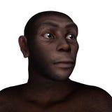 Female homo erectus portrait - 3D render Stock Photos