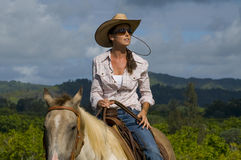 Female horse rider stock images