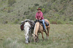 Female horse rider. Female rider with horse in the outback Royalty Free Stock Images