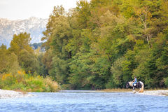 Female horse rider crossing river. In a beautiful landscape Royalty Free Stock Photos