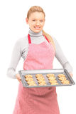 Female housewife with apron, holding freshly baked cakes Royalty Free Stock Image