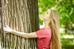 Female hugging a tree, looking up Royalty Free Stock Images