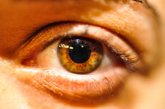 Female Human Eye Close Up Stock Photography