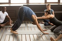 Female instructor helping male student with Downward facing dog. Exercise, teaching adho mukha svanasana pose, people practicing yoga lesson, friends in sport Royalty Free Stock Photography