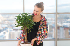 Female interior designer carrying decorative plant, holding pot. Front view portrait of florist looking at the tree in a Stock Images