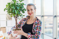 Female interior designer carrying decorative plant, holding pot. Front view portrait of florist looking at the tree in a stock image