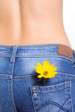 Female jeans with flower in pocket Stock Photography