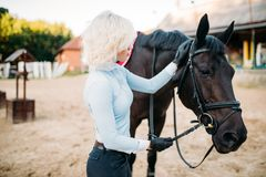 Female jockey and horse, horseback riding. Equestrian sport, young woman and beautiful stallion, farm animal Stock Photography