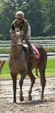 Female Jockey Maylan Studart Royalty Free Stock Image