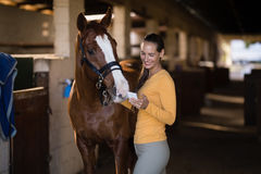 Female jockey using smart phone while standing by horse. In stable Royalty Free Stock Photography