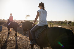 Female jockeys riding horse royalty free stock images