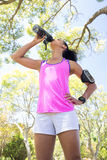 Female jogger drinking water in the park Royalty Free Stock Images