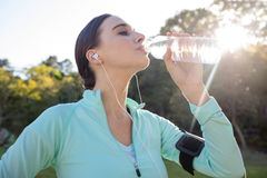 Female jogger drinking water in park Royalty Free Stock Image