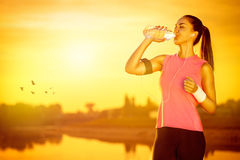 Female jogger drinking water royalty free stock image