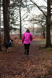 Female jogging with Great Dane Puppy Royalty Free Stock Photo