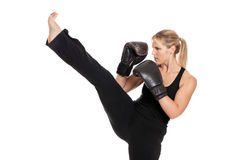 Female kickboxer. A female kickboxer performing a front kick isolated on white Stock Image