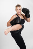 Female kickboxer kicking portrait Royalty Free Stock Images