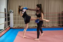Kickboxing girls sparring. Female kickboxers sparring in the ring royalty free stock images