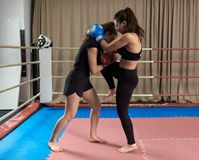 Kickboxing girls sparring. Female kickboxers sparring in the ring royalty free stock photo