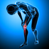 Female knee pain Royalty Free Stock Photography