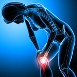 Female knee pain Royalty Free Stock Photos