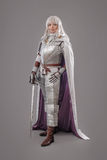 Female Knight In Shining Armour Royalty Free Stock Images