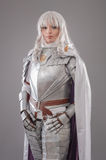 Female Knight In Shining Armour Stock Image