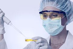 Female Lab Technician With Pipette And Liquid Stock Photography