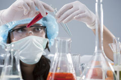 .Female Laboratory Staff Conducting Experiment with Two Liquid Specimens Stock Photos