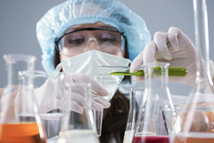 Female Laboratory Staff in Facial Mask And Protective Gloves Conducting Experiment with Liquids in Flasks in Lab Stock Image