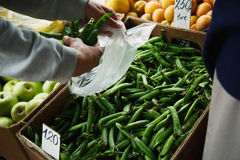 The female lays pea pods in a package Royalty Free Stock Photos