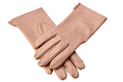 Female leather gloves Royalty Free Stock Images