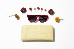 Female  leather purse and sunglasses Royalty Free Stock Image
