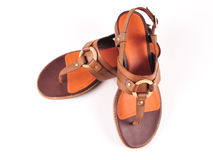 Female leather sandals Stock Images