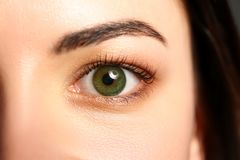 Female left emerald green coloured eye extreme closeup. Low light technique oculist and perfect vision contact lens correction beauty shadow makeup cosmetics royalty free stock image
