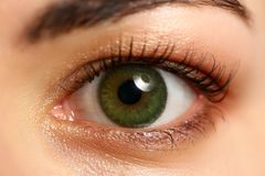Female left emerald green coloured eye extreme closeup. Low light technique oculist and perfect vision contact lens correction beauty shadow makeup cosmetics royalty free stock photo