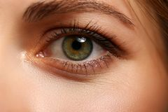 Female left emerald green coloured eye extreme closeup. Low light technique oculist and perfect vision contact lens correction beauty shadow makeup cosmetics stock photography