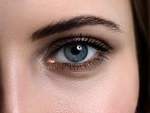 Female left green coloured eye extreme closeup royalty free stock photography