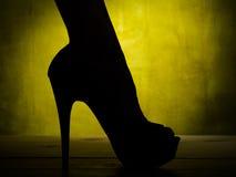 Female leg in high heel Royalty Free Stock Photo
