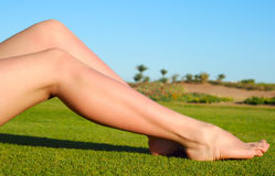 Female legs Stock Photos