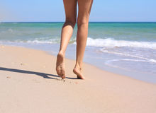 Female legs. On a sea background Stock Image