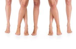 Female legs. Stock Image