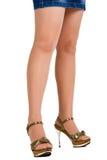 Female legs Stock Photography
