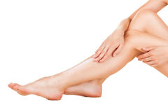 Female legs Stock Images