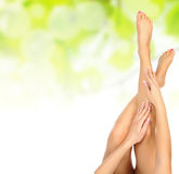 Female legs being massaged Royalty Free Stock Photos