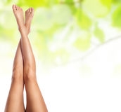 Female legs being massaged Royalty Free Stock Images
