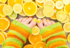 Female legs between citrus fruits Stock Images