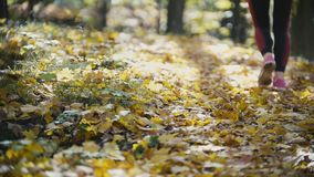 Female Legs Feet Running at yellow autumn park. Sports lifestyle concept, slow motion stock footage
