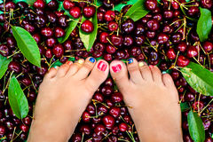 Female legs fresh summer berries Stock Images